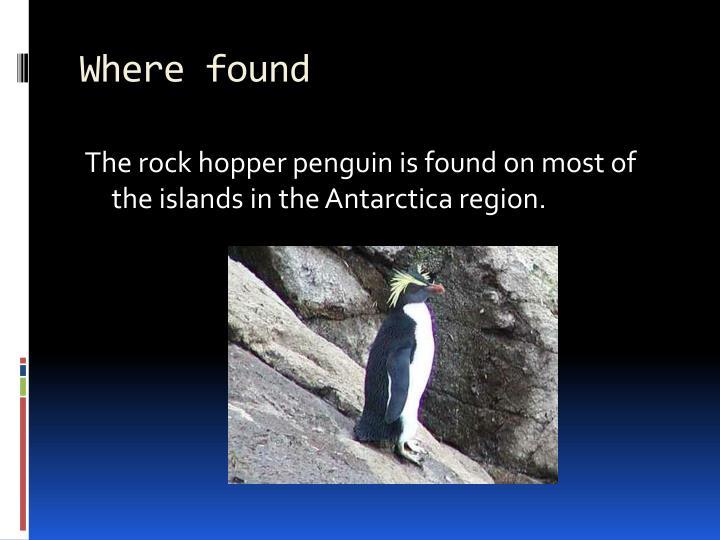 Where found