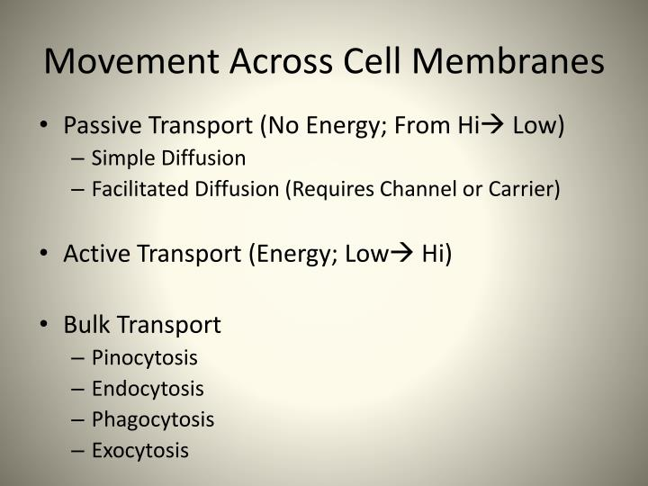 Movement Across Cell Membranes