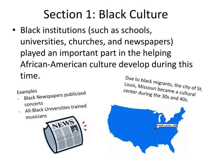 Section 1: Black Culture