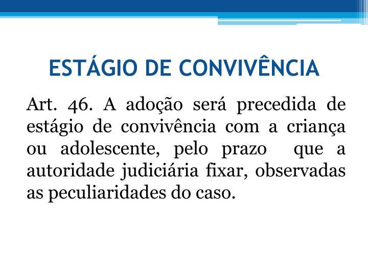 ESTGIO DE CONVIVNCIA