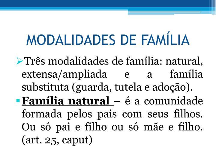 MODALIDADES DE FAMLIA