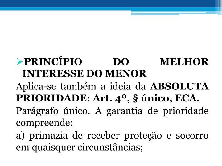 PRINCPIO DO MELHOR INTERESSE DO