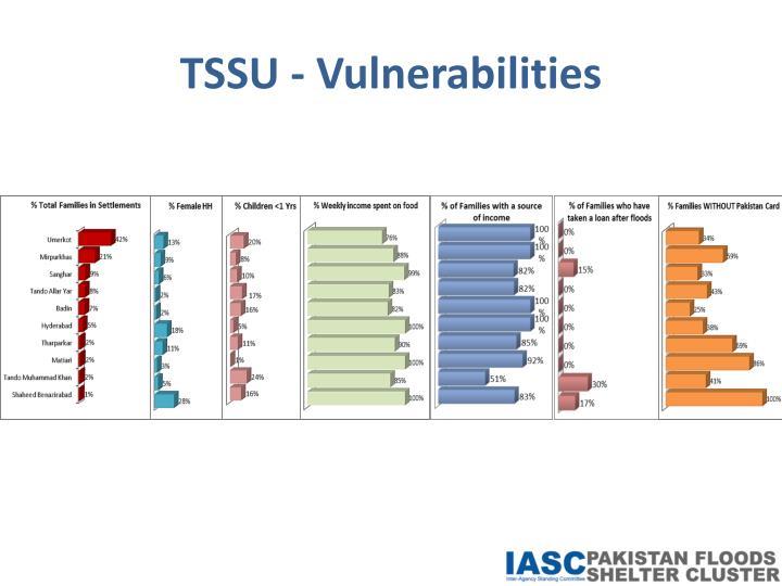 TSSU - Vulnerabilities