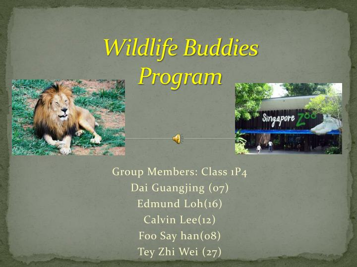 Wildlife buddies program