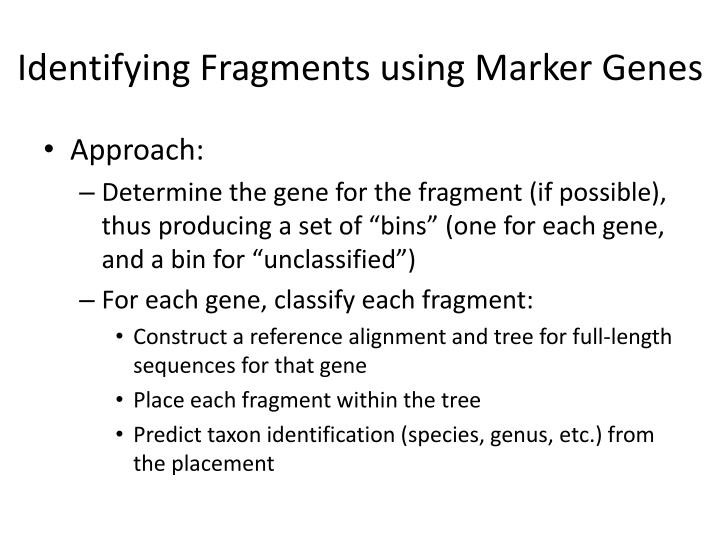 Identifying Fragments using