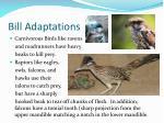 bill adaptations2
