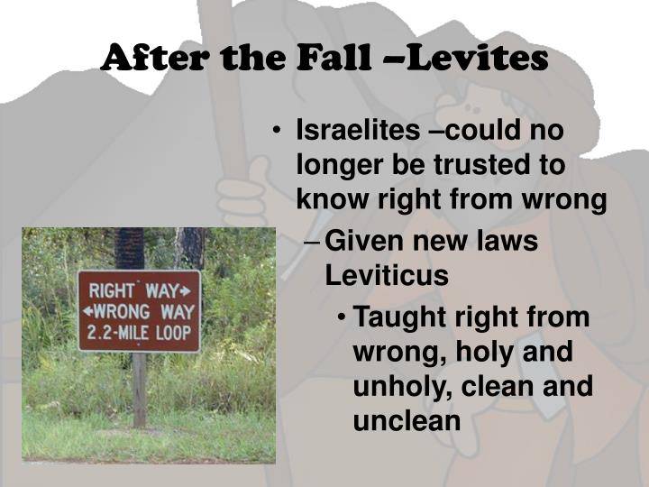 After the Fall –Levites