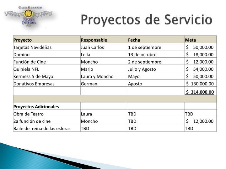 Proyectos de Servicio