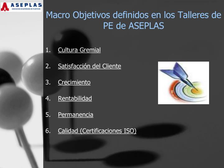 Macro Objetivos definidos en los Talleres de PE de ASEPLAS