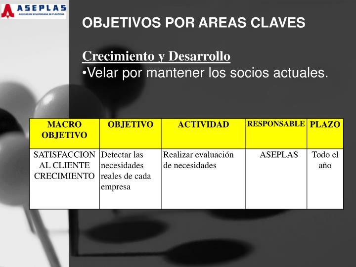 OBJETIVOS POR AREAS CLAVES