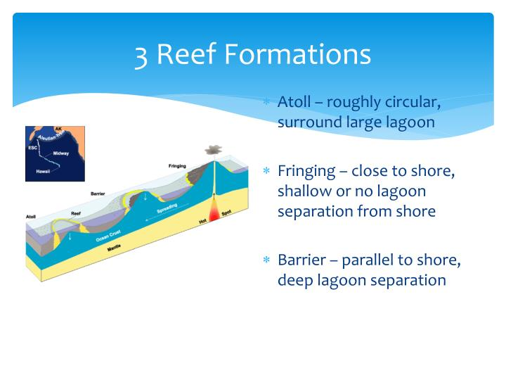 3 Reef Formations