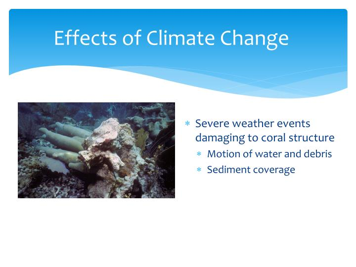 Effects of Climate Change