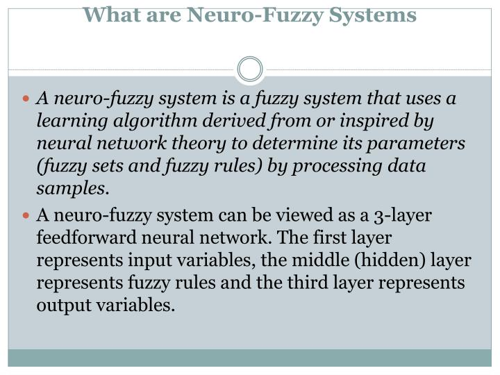 What are neuro fuzzy systems