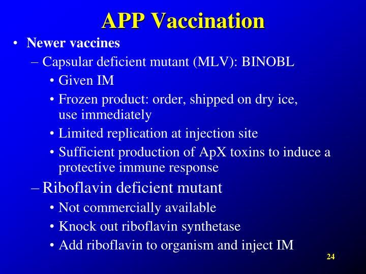 APP Vaccination