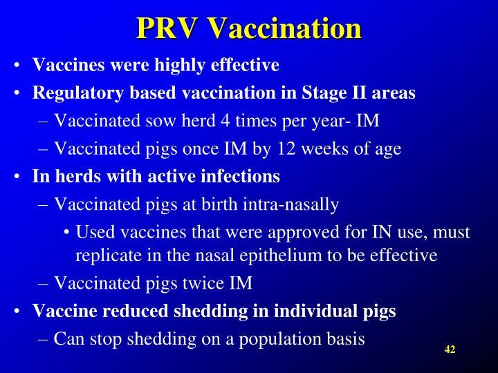 PRV Vaccination