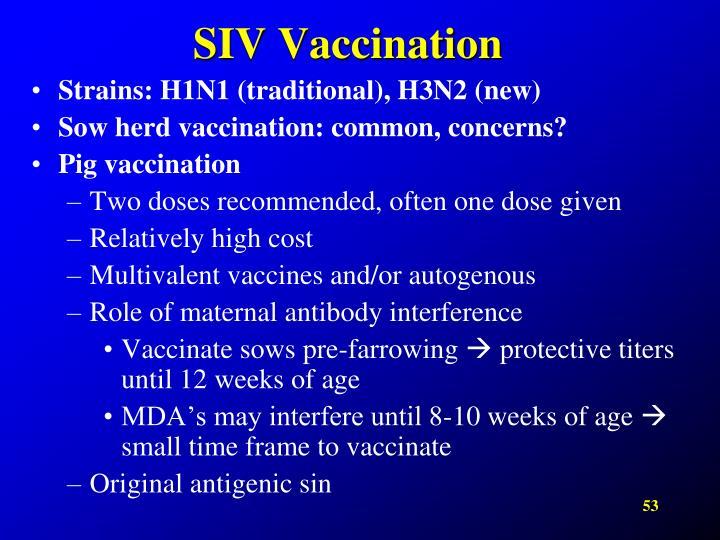 SIV Vaccination