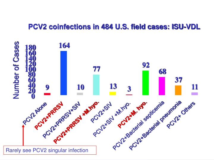 PCV2 coinfections in 484 U.S. field cases: ISU-VDL