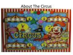about the circus