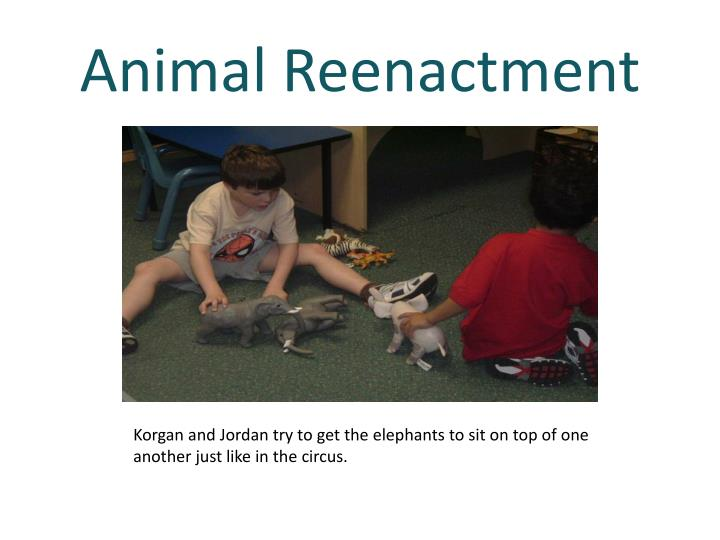 Animal Reenactment