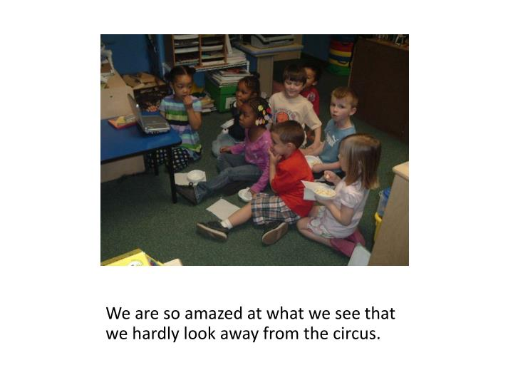 We are so amazed at what we see that we hardly look away from the circus.