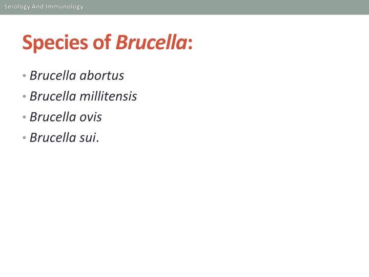 Species of