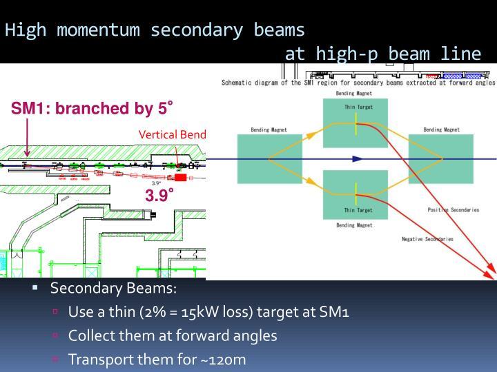 High momentum secondary beams