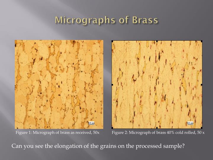 Micrographs of Brass