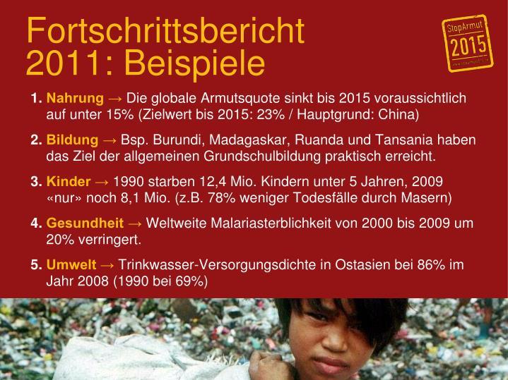 Fortschrittsbericht 2011: Beispiele