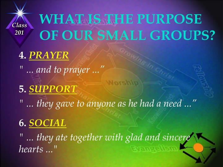 WHAT IS THE PURPOSE OF OUR SMALL GROUPS?