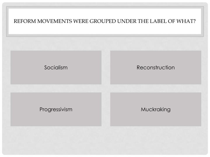 Reform movements were grouped under the label of What?