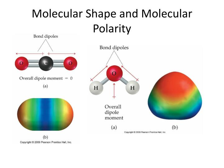 Molecular Shape and Molecular Polarity