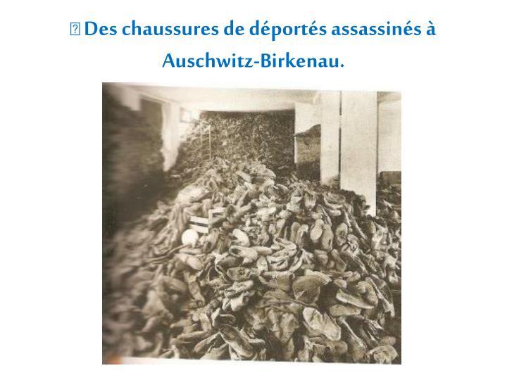  Des chaussures de déportés assassinés à Auschwitz-Birkenau.