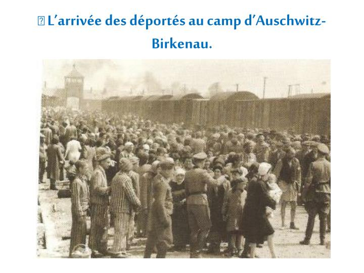  L'arrivée des déportés au camp d'Auschwitz-Birkenau.
