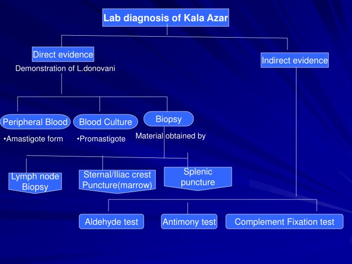 Lab diagnosis of Kala Azar