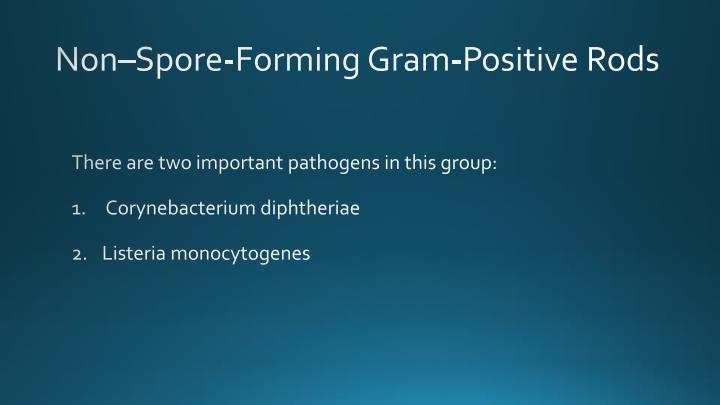 Non–Spore-Forming Gram-Positive Rods