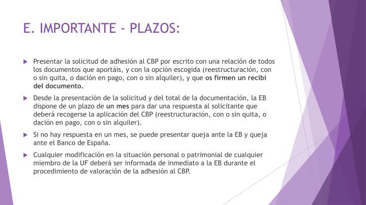 E. IMPORTANTE - PLAZOS: