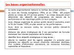 les bases organisationnelles