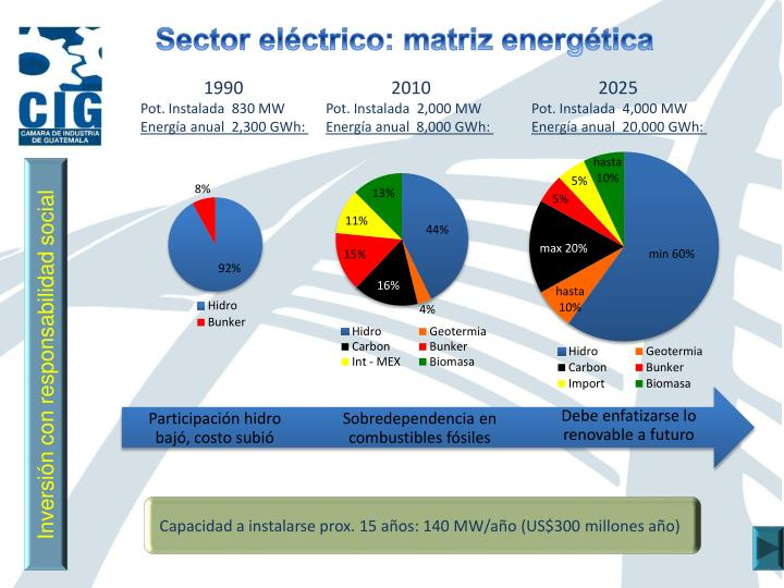 Sector eléctrico: matriz energética