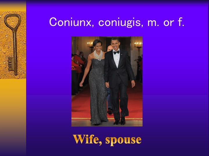 Coniunx