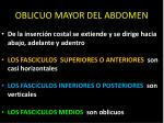 oblicuo mayor del abdomen1