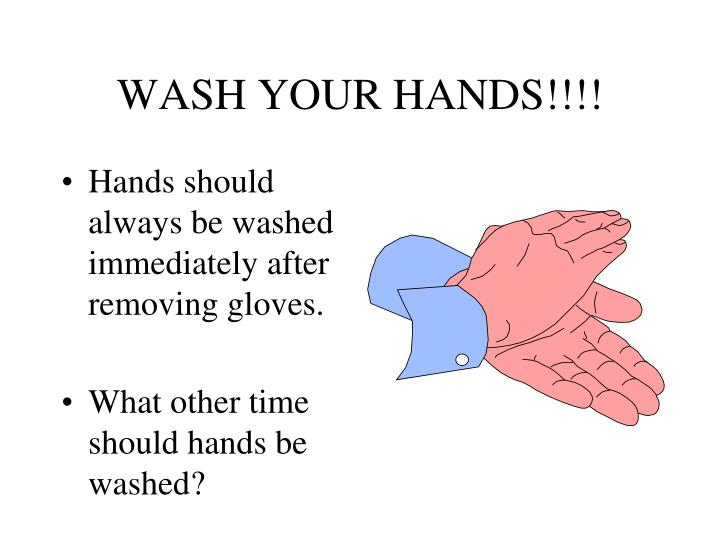 WASH YOUR HANDS!!!!