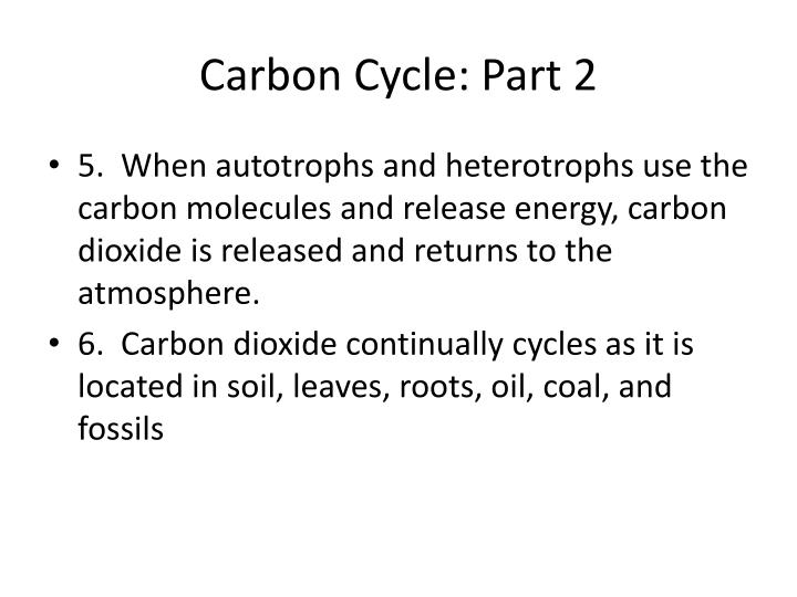 Carbon Cycle: Part 2