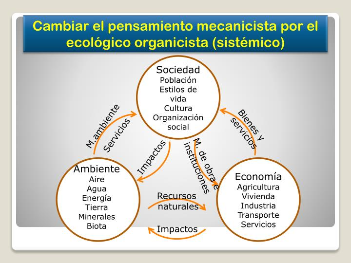 Cambiar el pensamiento mecanicista por el ecológico organicista (sistémico)