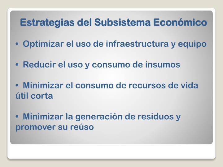 Estrategias del Subsistema Económico