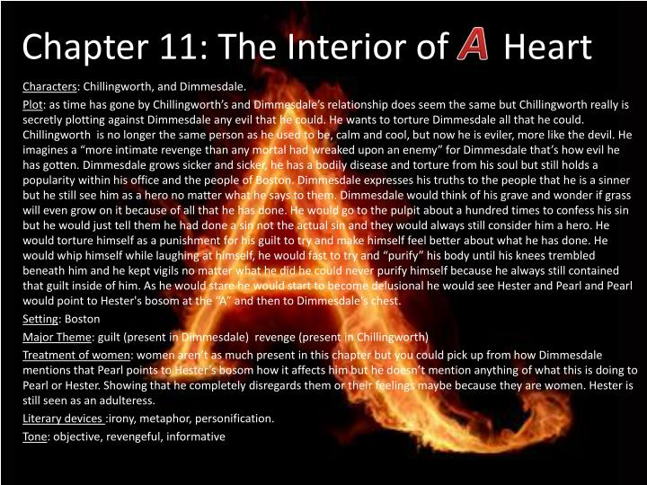 Chapter 11 th e interior of heart