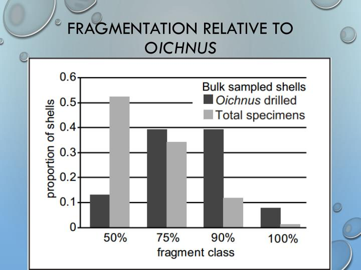 Fragmentation Relative to
