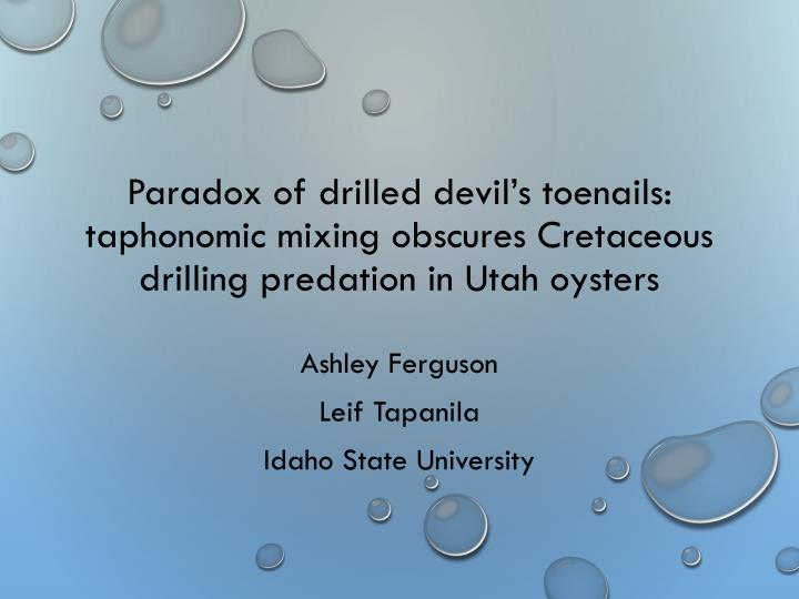 Paradox of drilled devil's toenails: taphonomic mixing obscures Cretaceous drilling predation in U...