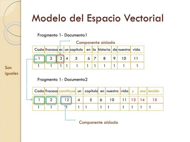 Modelo del Espacio Vectorial