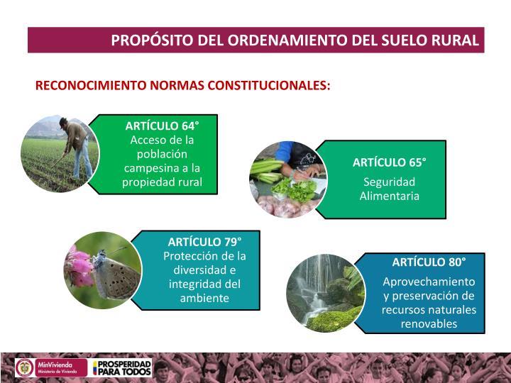 PROPÓSITO DEL ORDENAMIENTO DEL SUELO RURAL