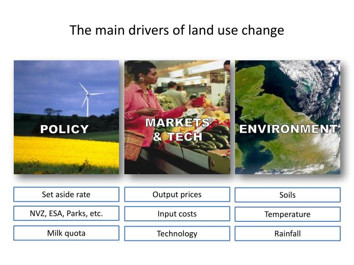 The main drivers of land use change